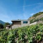 Germanier House by Savioz Fabrizzi Architecte (6)