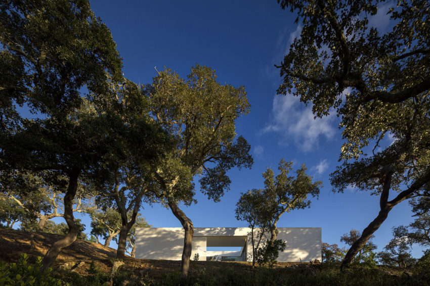 House in Quinta Do Carvalheiro by GSMM Architetti (3)