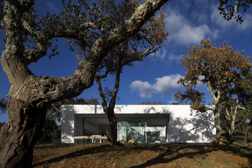 House in Quinta Do Carvalheiro by GSMM Architetti (4)