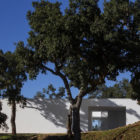 House in Quinta Do Carvalheiro by GSMM Architetti (5)