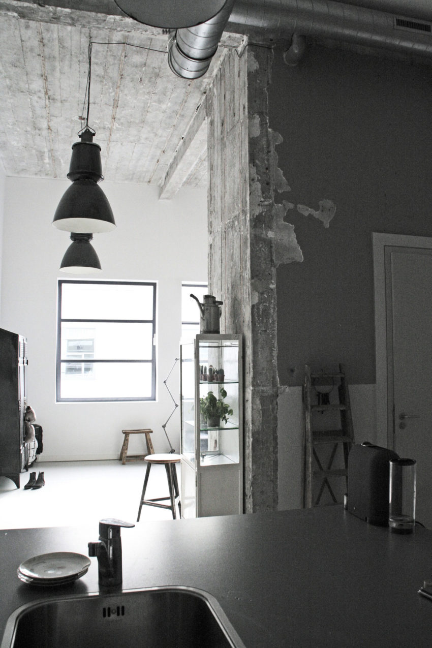 Jason Hering's Loft by Renee Arns Stylist (8)