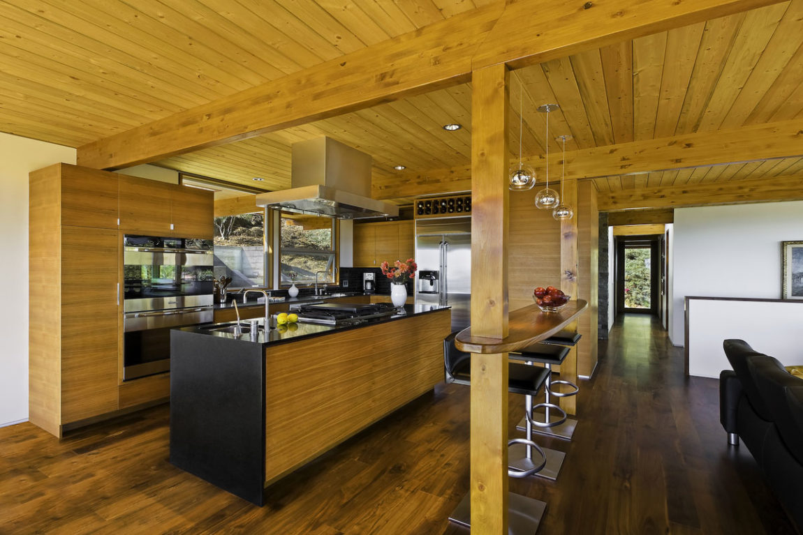 Mid-Century Modern Residence by AB design studio (4)