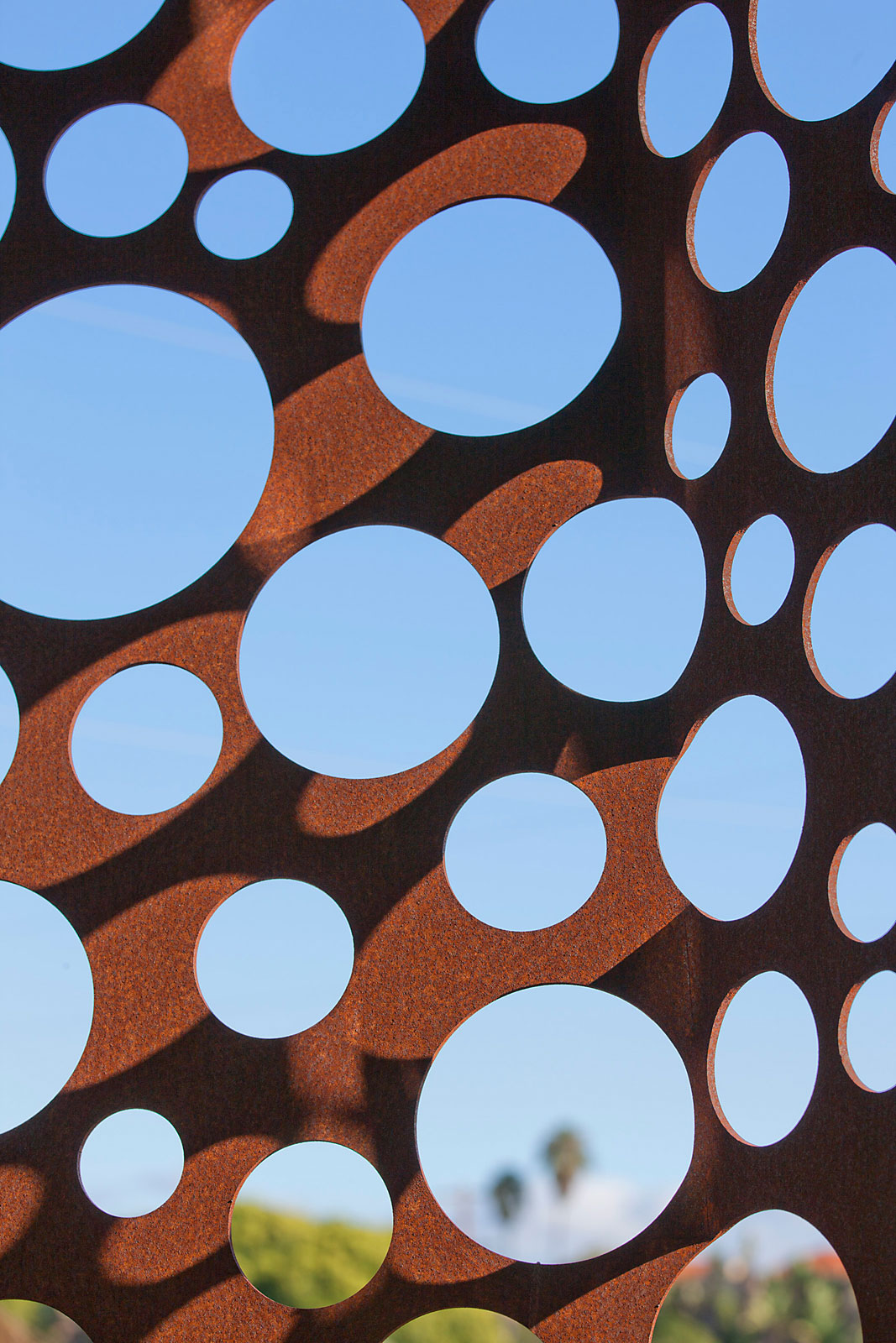 The Walnut Residence by Modal Design (2)