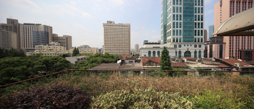 Wulumuqi Road Apartment by SKEW Collaborative