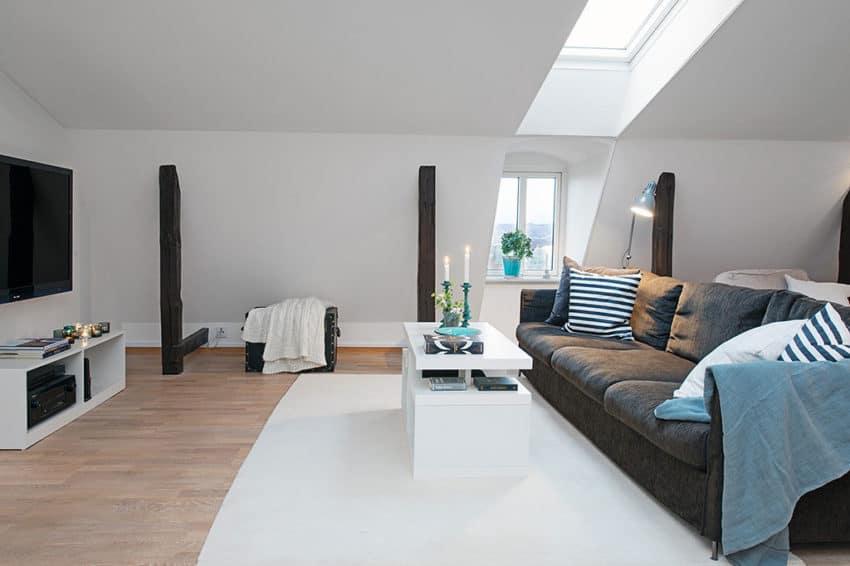 Apartment on Hvitfeldtsgatan (4)