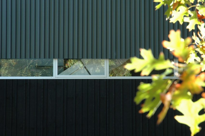 Bark House by Herbst Architects (2)
