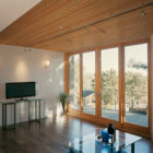 Jones Residence by Kaplan Architects (5)
