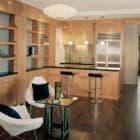 Jones Residence by Kaplan Architects (11)