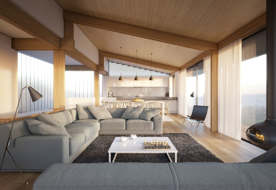 Silver House by Hyde + Hyde Architects (2)