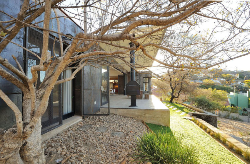 10 Ossmann Street by Wasserfall Munting Architects (5)