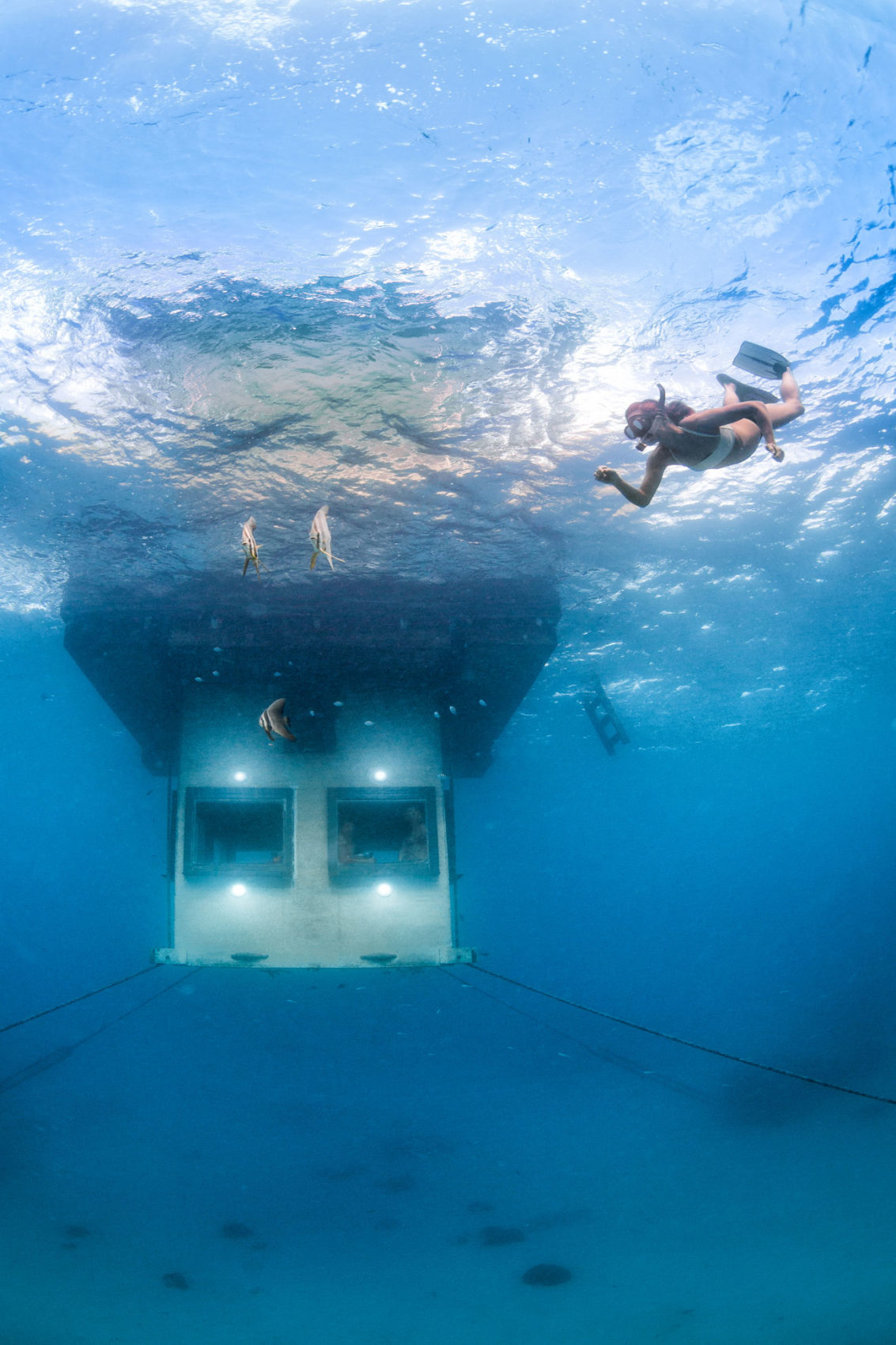 The Manta Underwater Room by Genberg Underwater Hotels (5)