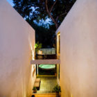 Tree House by Taller Estilo Arquitectura (17)