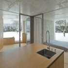 Chameleon House by Petr Hajek Architekti (2)