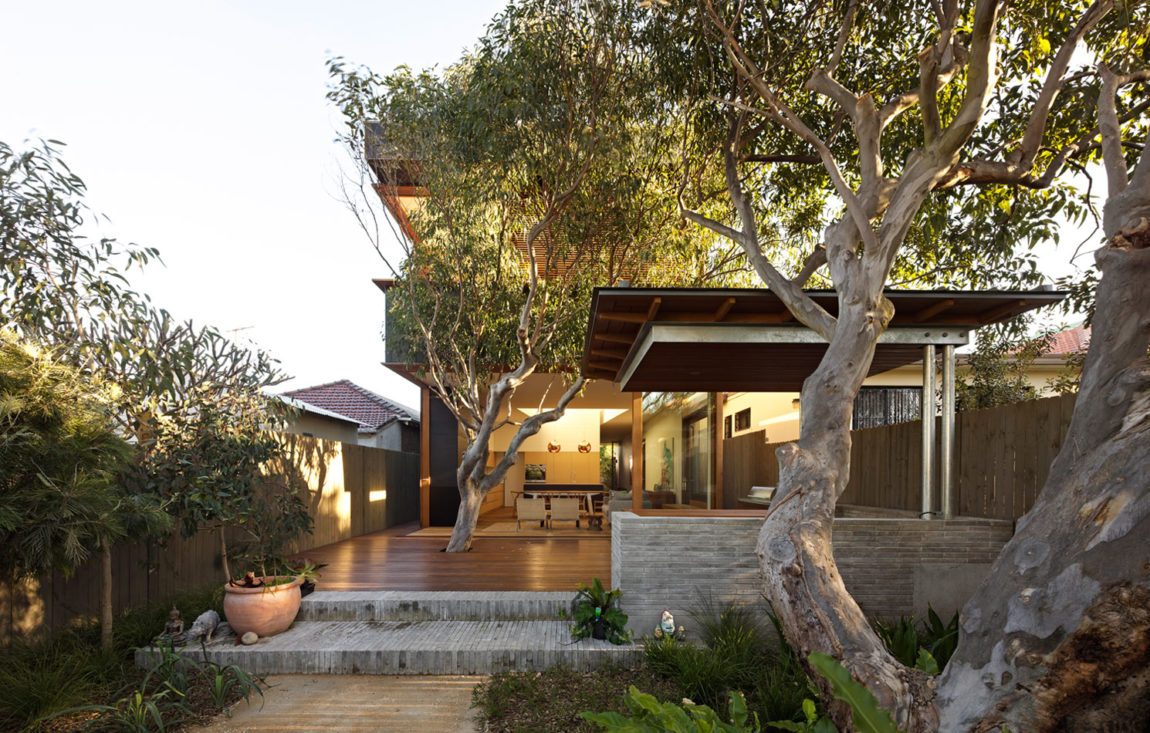 Plywood House II by Andrew Burges Architects (2)