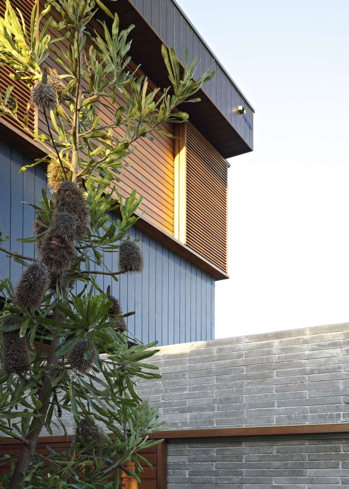 Plywood House II by Andrew Burges Architects (5)