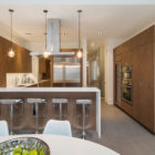 Townhouse Architecture by Turett Architects (2)