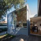 374 Hamilton by Bourne Blue Architects (4)
