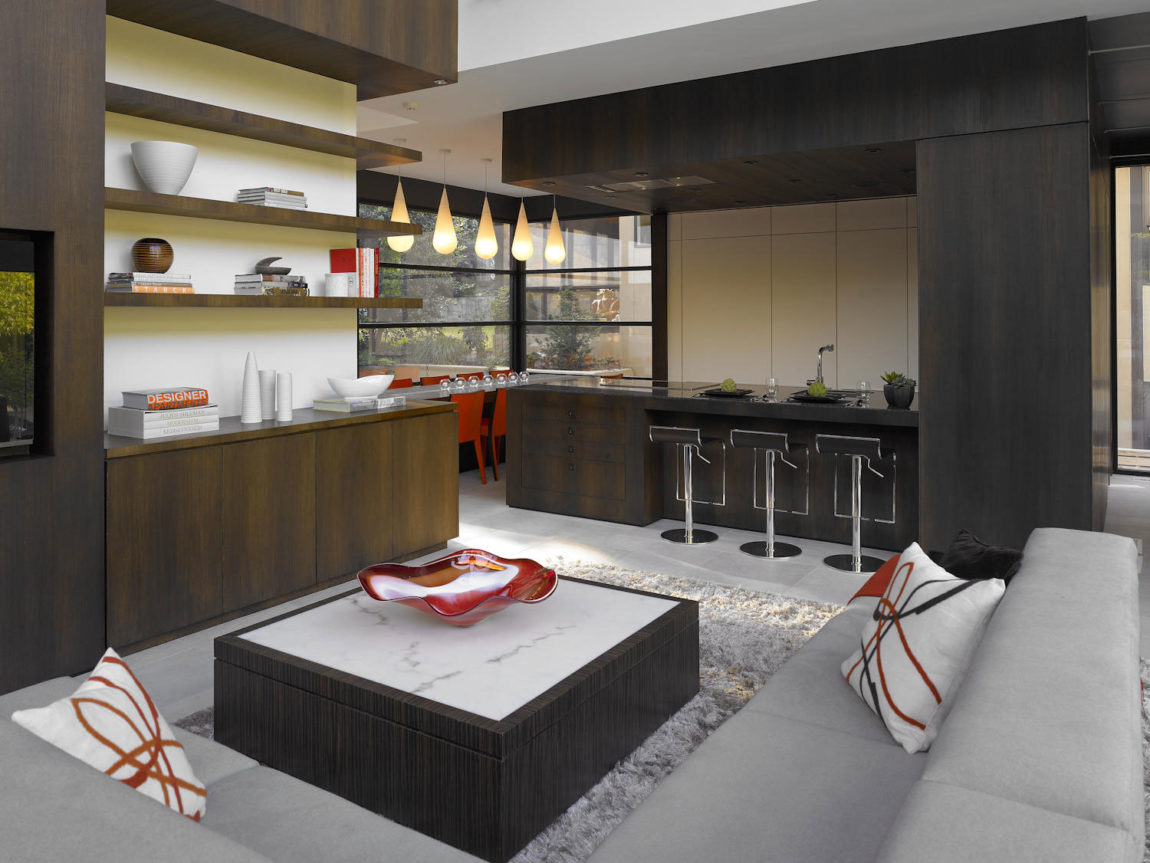 Ansley Modern Interior by Habachy Designs (2)