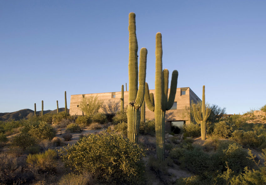 Desert Courtyard House by Wendell Burnette Architects (2)