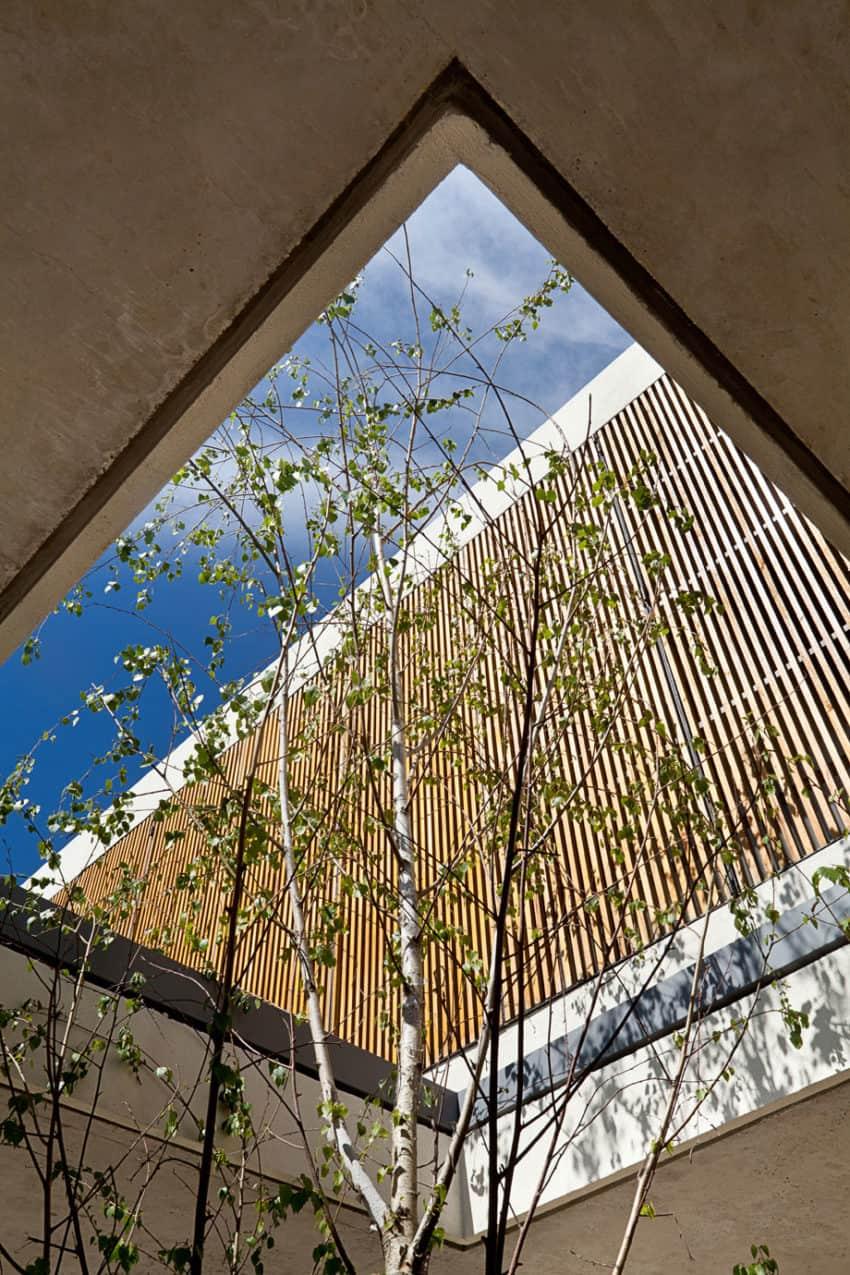 Pedro House by VDV ARQ (14)