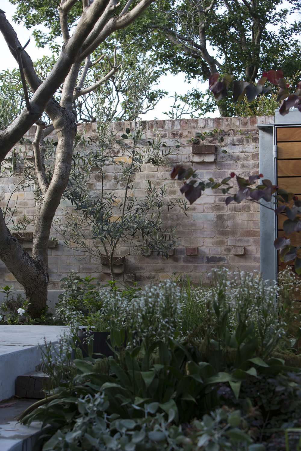 The Garden Project by Welsh+Major (2)