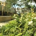 Barnsbury Townhouse Garden by Daniel Shea (5)