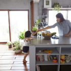 Bath Kitchen House by Takeshi Shikauchi Architect Office (8)
