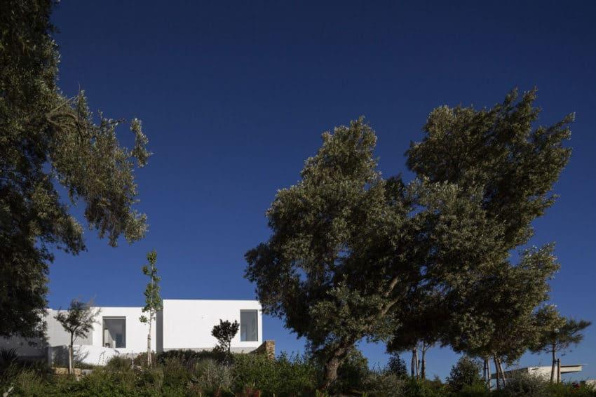 Casa da Malaca by Mario Martins Atelier (10)
