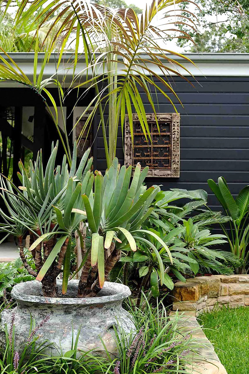 Home in Sydney (1)