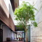 House at Neil Road by ONG&ONG (16)