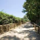 Masseria Constanza (7)