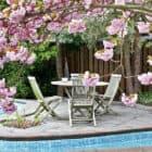 Pool Paradise (7)