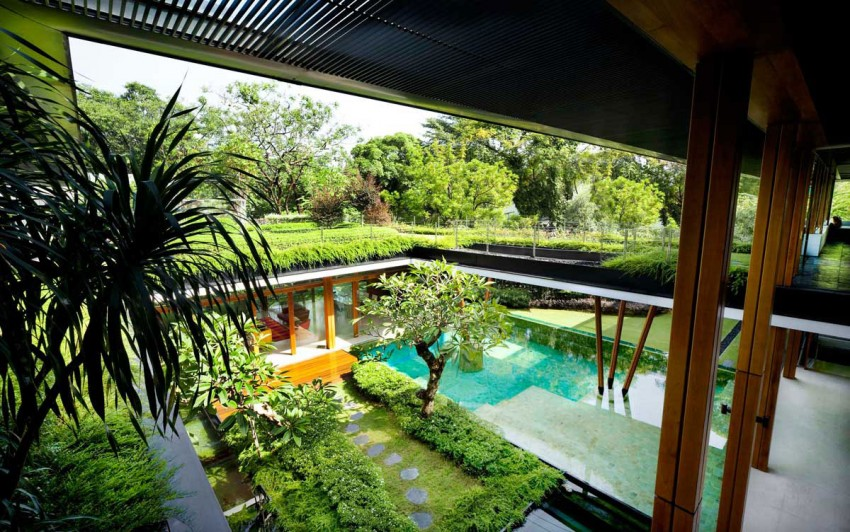 Water Lily House by Guz Architects (6)