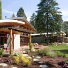 Garden House by Balance Associates Architects (5)