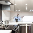 Genesee Townhomes by Elemental Architecture (5)