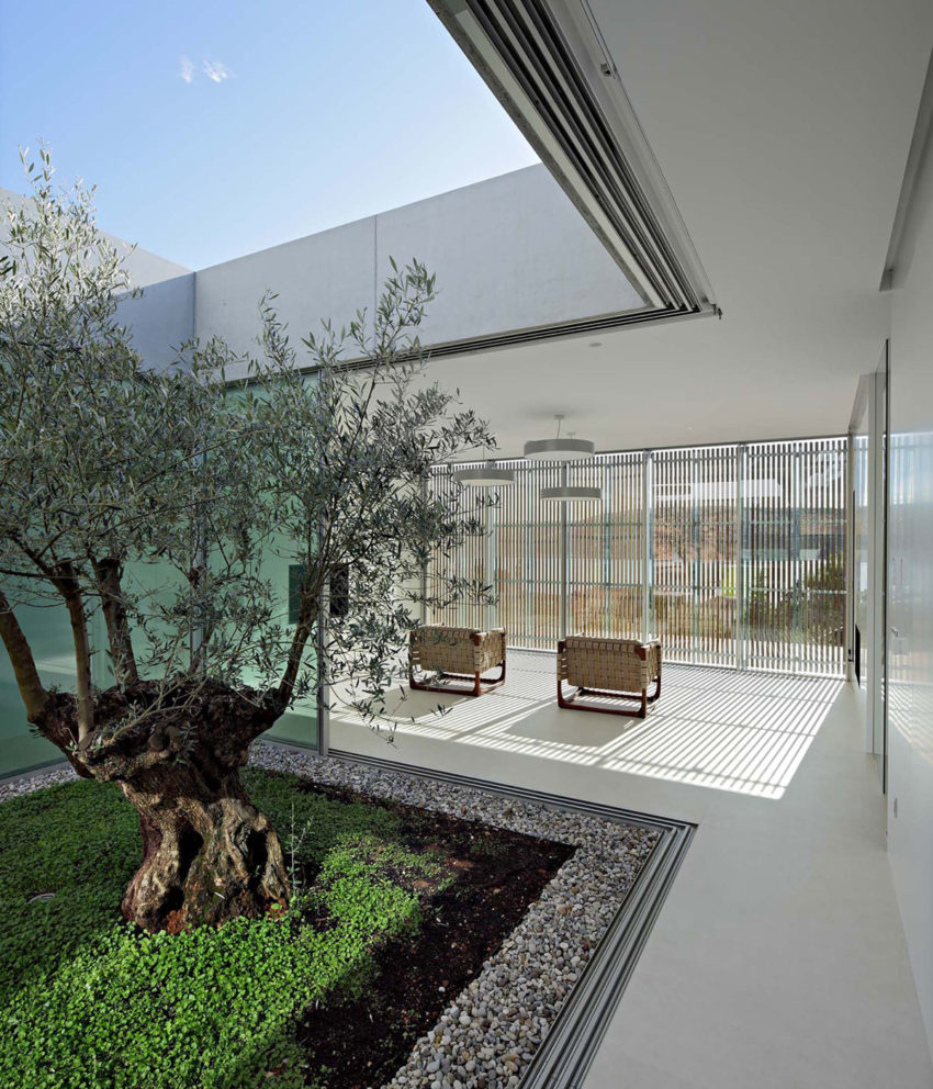 Olive House by LOG-URBIS (13)