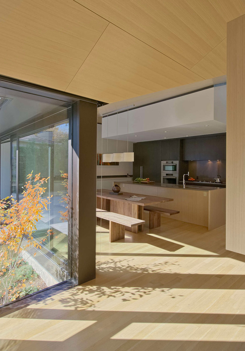 Abenbare House by D'Arcy Jones Architecture (8)