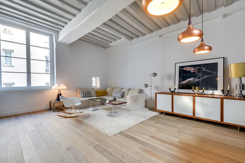 Apartment in the Heart of Paris by Tatiana Nicol (2)