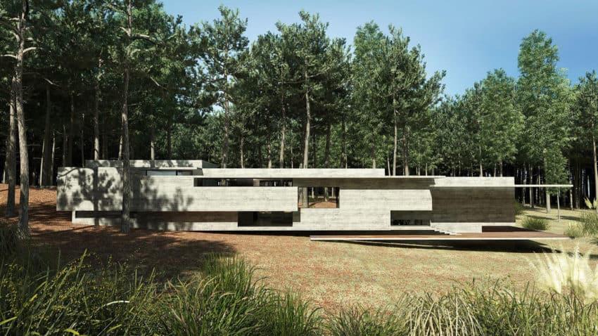 Casa Bosque by Besonias Almeida Arquitectos (2)