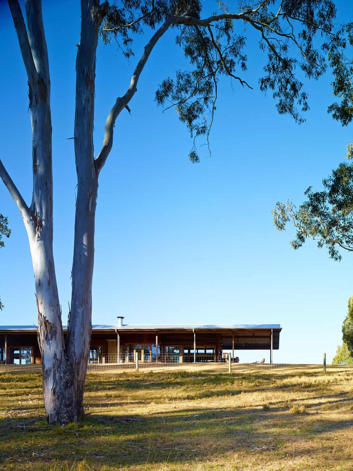 Hinterland House by Shaun Lockyer Architects (2)