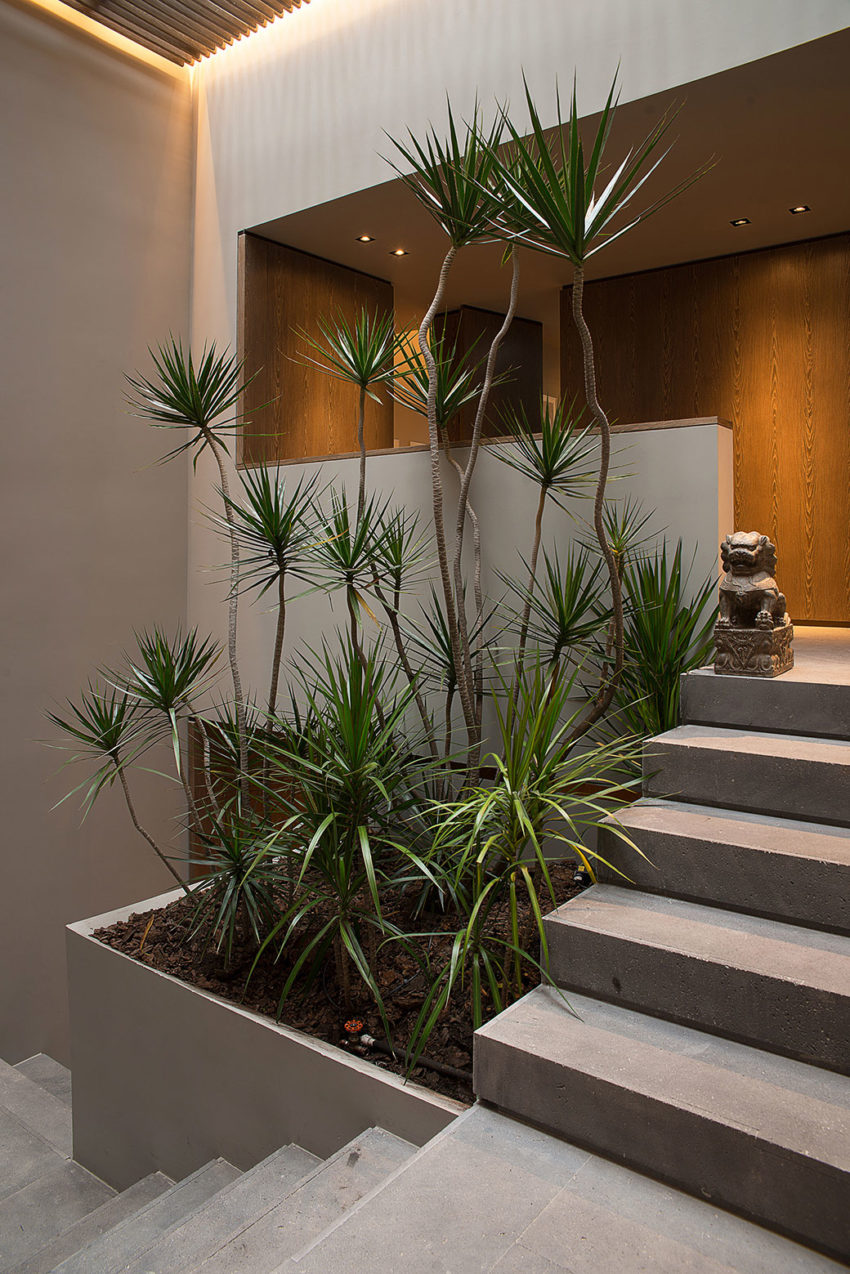 Barrancas House by EZEQUIELFARCA arquitectura y diseño (12)