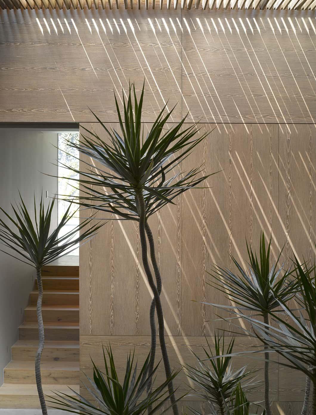 Barrancas House by EZEQUIELFARCA arquitectura y diseño (13)