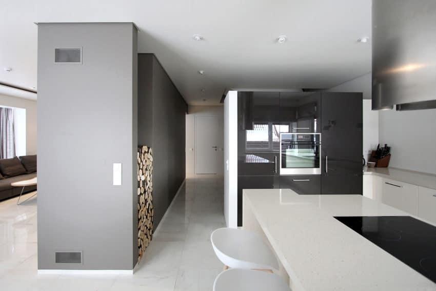 House 02 by Ramunas Manikas (7)