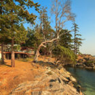 Saturna Island Retreat (1)