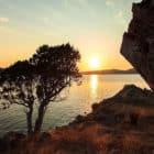 Saturna Island Retreat (26)