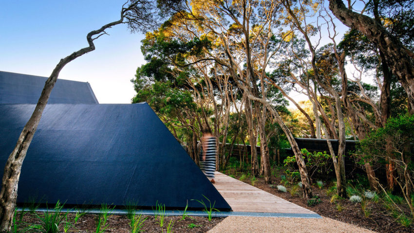 Cabin 2 by Maddison Architects (2)