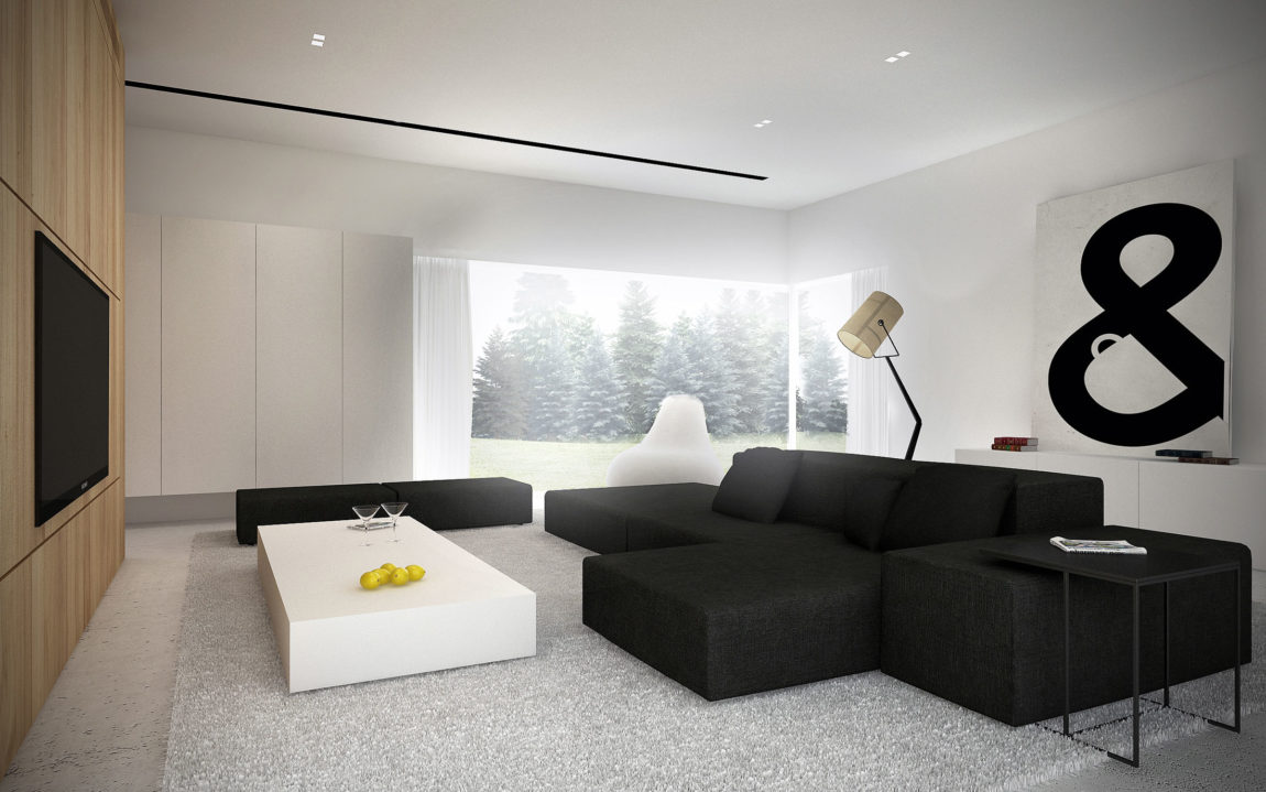 Ehouse minimalist house by minimal architects for E house
