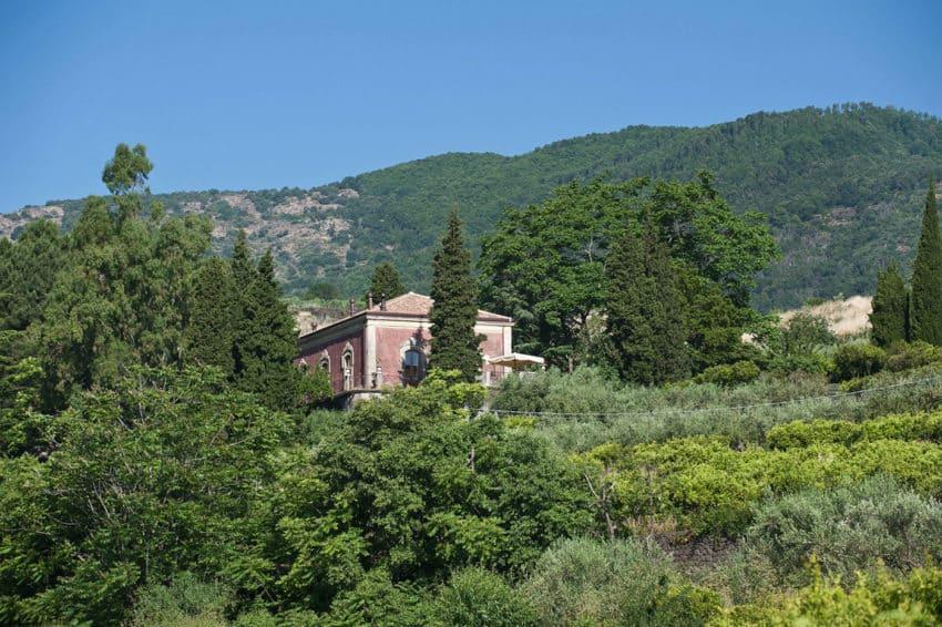 Monaci Delle Terre Nere (2)