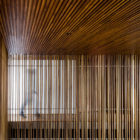 V9 by VGZ Arquitectura (10)