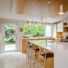 Venice Island Mid Century by Dynan Construction Mgmt (9)